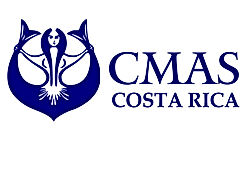 WhatsApp Image 2020-11-22 at 16.27.37.jp