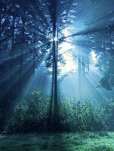 Magical Light by Daniel Csoka.jpg