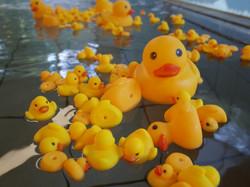 アヒル風呂