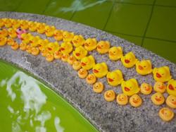 毎週日曜はアヒル風呂!