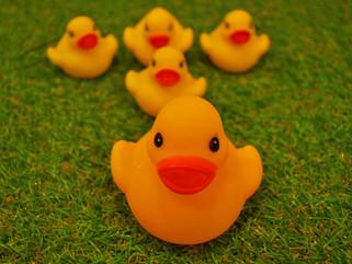 毎週日曜日はアヒル風呂の日!