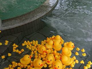 ぬる湯&アヒル風呂