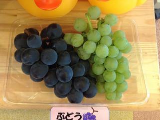 葡萄はじめました