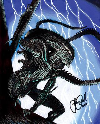 Xenomorph (Alien)