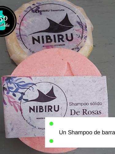 Shampoo de barra organico