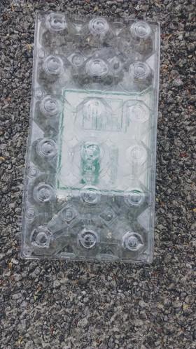 Charola de plástico pete (1) para el huevo