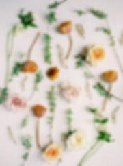 Amy Plant-perdue Favorites-0011.jpg