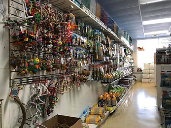 Wall of Bird Toys and Supplies26239328_1666503446704985_91691036996571