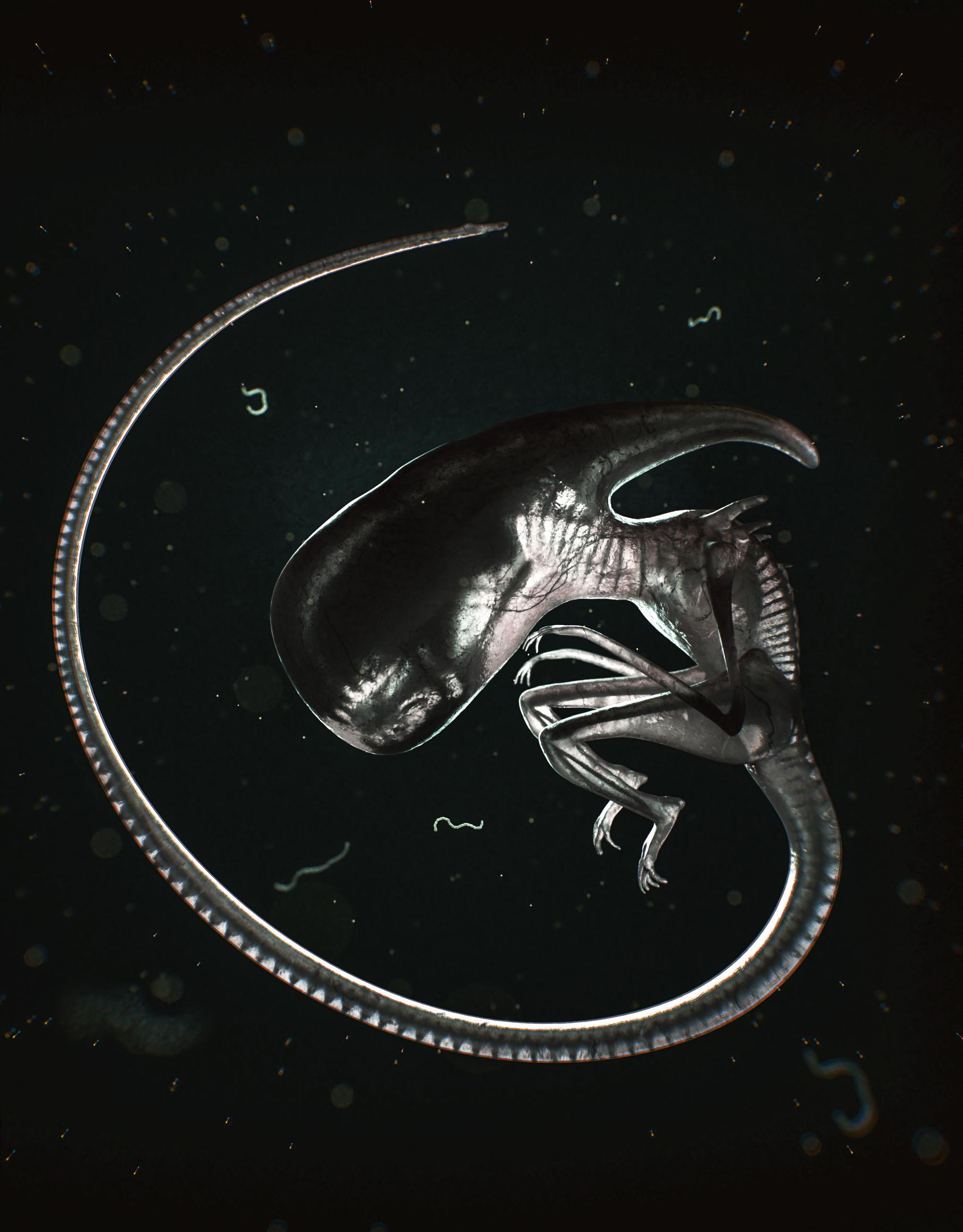 Neomorph final