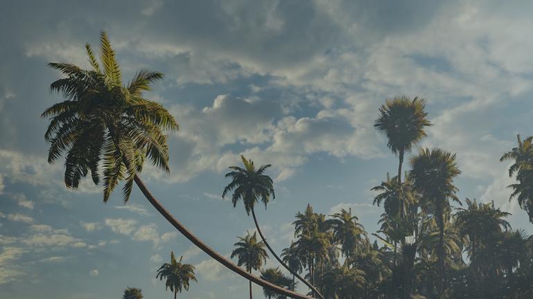 tropical_beach_03.png