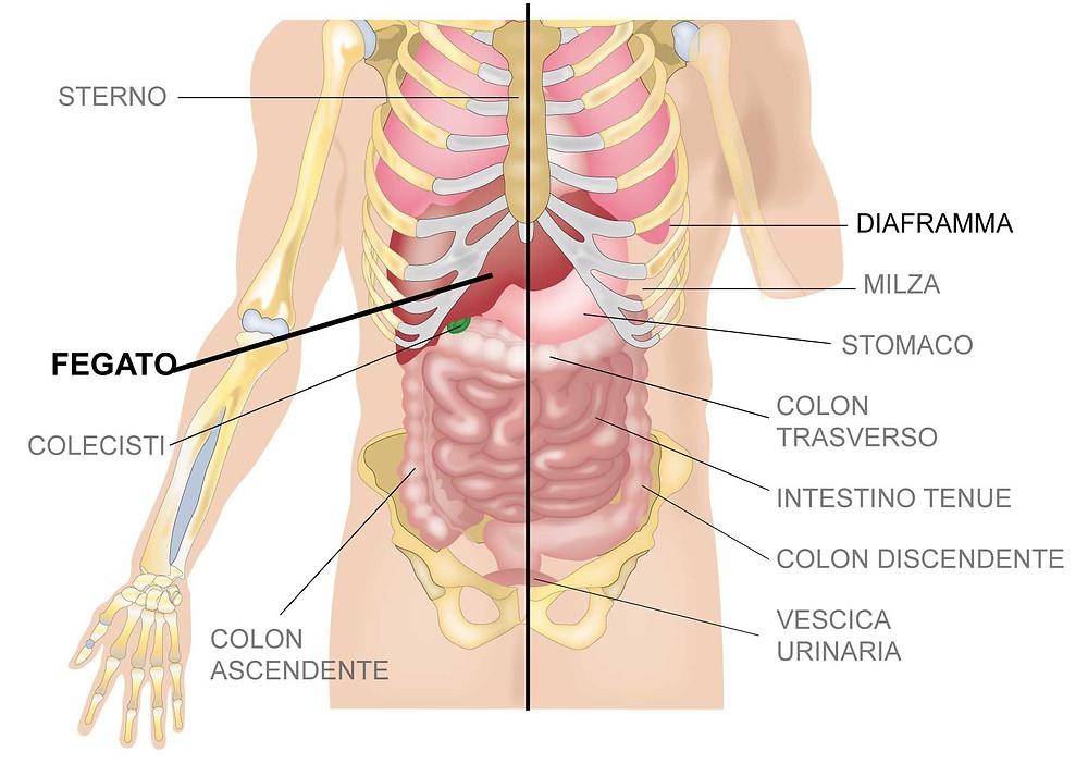 Migliore osteopata a Cagliari con recensioni positive è Dottor Angioni Giuseppe