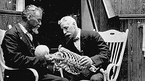 Le sedute di Osteopatia di Dottor Angioni, che è il migliore Osteopata a Cagliari e provincia, hanno come scopo quello di riportare in buona salute, tutte le persone che veramente risentono uno stile di vita compromesso dal dolore muscolare e scheletrico.