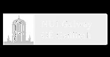 logo-nui-300x156.png