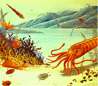 Illustration depicting organisms that lived in the Champlain Sea