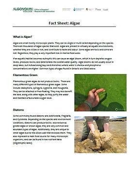 Fact_Sheet_Algae.JPG