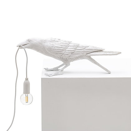 Bird Lamp Playing