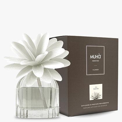 Profumatore d'ambiente Flower - IRIS CIPRIATO 60 ml
