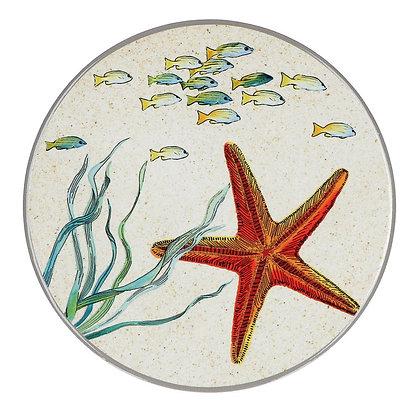 SEALIFE Sottopentola Stella marina