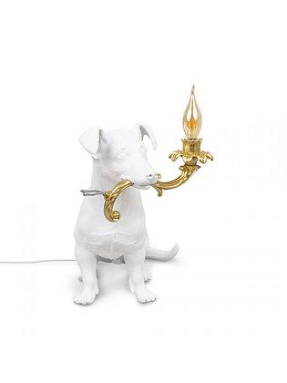 Rio Lamp