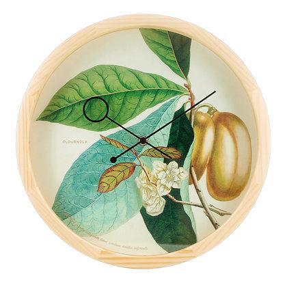 Orologio Botanical - Anona