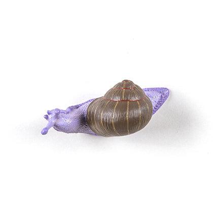 Hangers Snail Slow Coloured