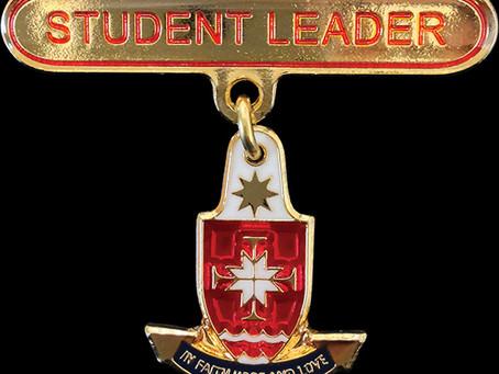 Custom School Badges and Pins