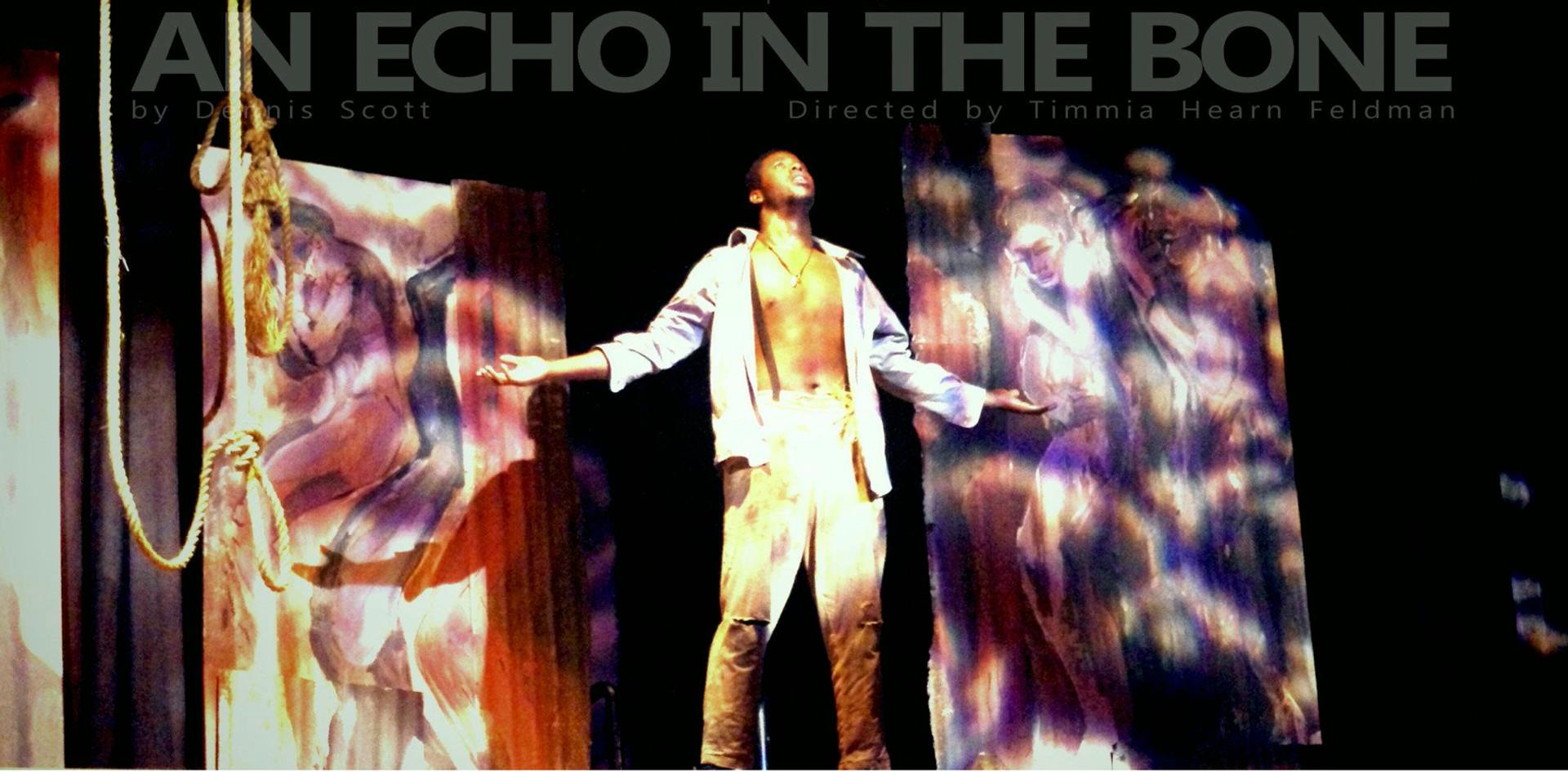 An Echo in the Bone by Dennis Scott (2012)