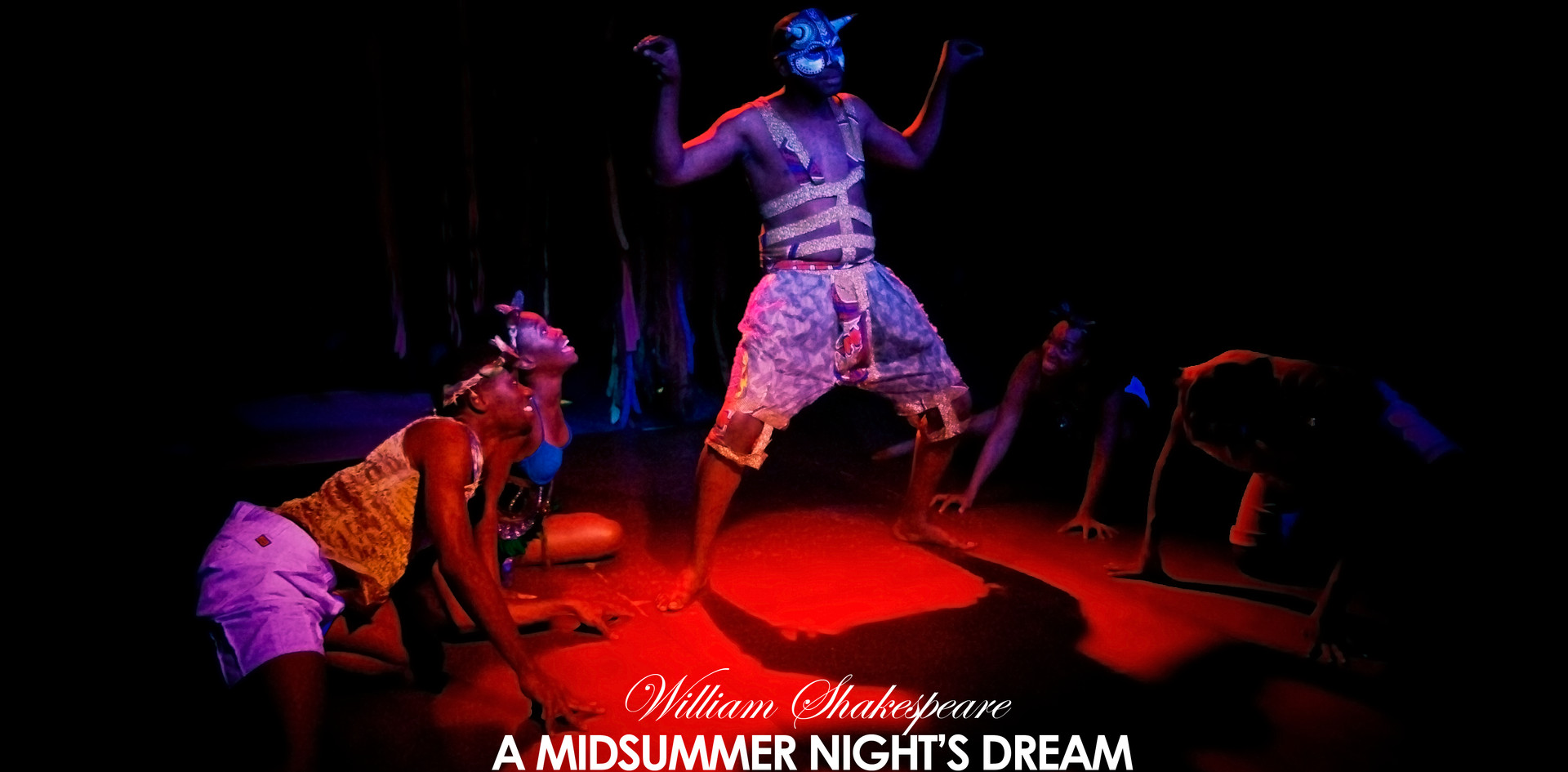 A Midsummer Nights Dream by William Shakespeare (2013)