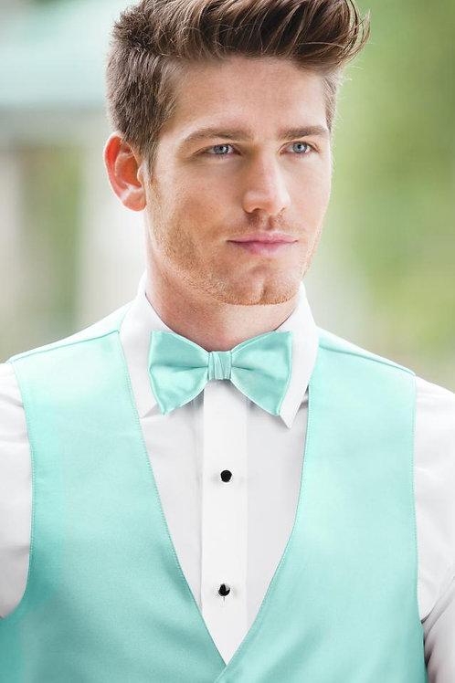 Expressions Tiffany Blue  Bow Tie
