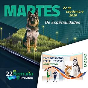 SP22-foro-mascotasESP.png