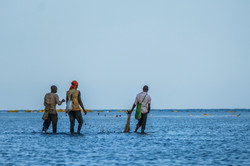 Fishermen - by Ewout Knoester