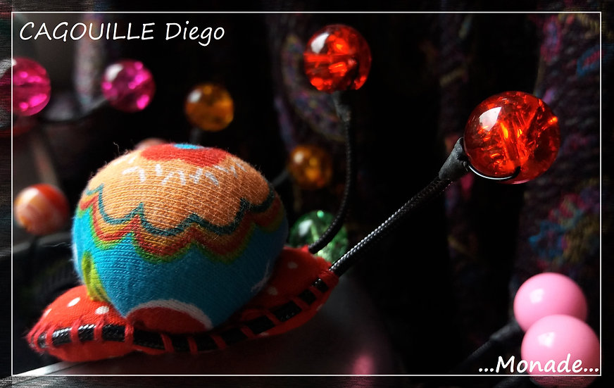 Cagouille Diego