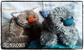 Ronron Brugnon et Martin.jpg