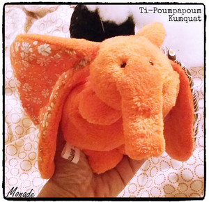 Ti-Poumpapoum Kumquat.