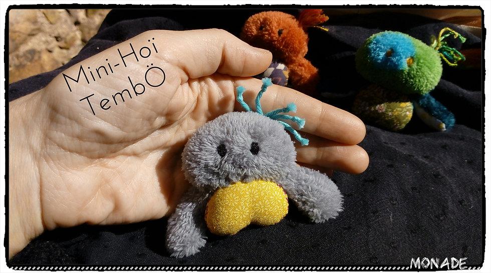 Mini-Hoï Tembö