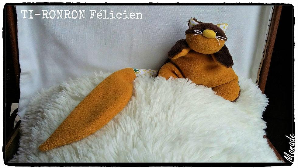 Ti-Ronron Félicien ( MixPoildoux )