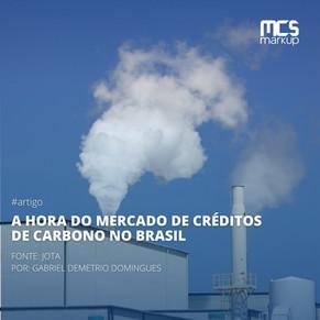 A hora do mercado de créditos de carbono no Brasil