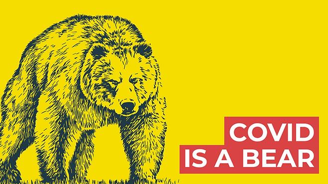 Covid is a Bear. Photo 3. Option 1. covi