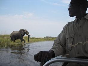 Okavango-Boating-Guide-768x576.jpg