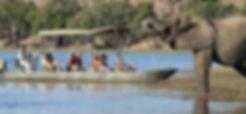 Backpackers safari