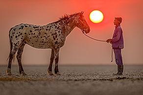 Riding_Safari-Horse_and_groom.jpg