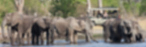 Game-drive-Elephant2-1696x550.jpg