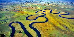 Trans Okavango