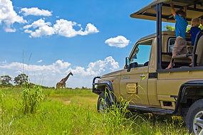 Botswana Budget camping safaris