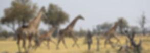 Botswana 2021