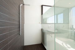 Master Suite Bathroom Shower