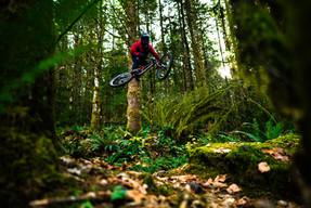 Jumping Ry Creek