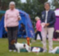 BIS unghund - Morris.jpg