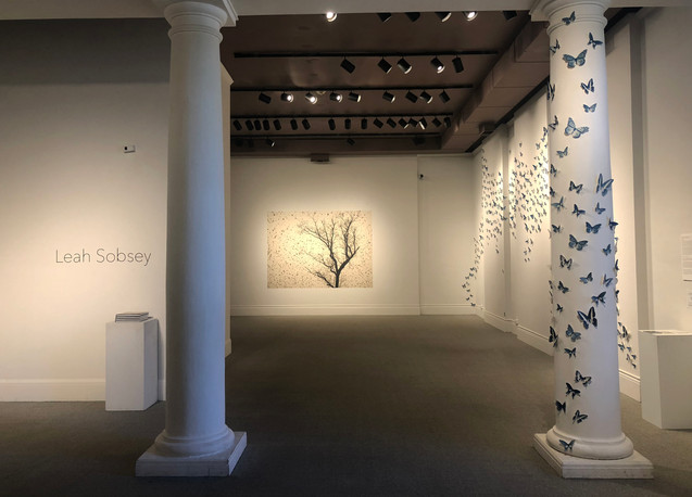 8. Swarm Center for Fine Art Photography