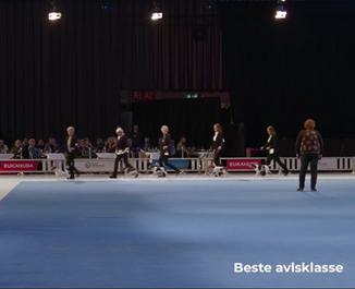 gruppefinale-avlsklassen-fredag.png